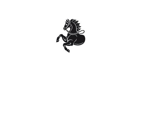 rozvojovy_fond_logo